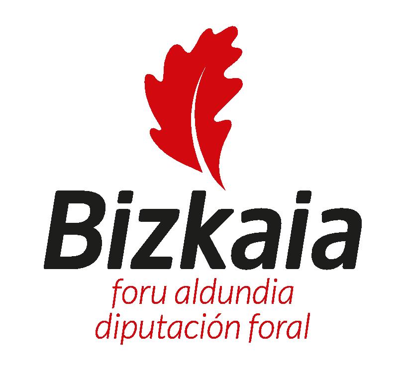 Bizkaiako foru aldundia - Diputación foral de Bizkaia